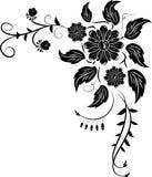 Element for design, corner flower,  Stock Photo