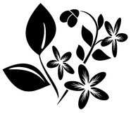 Element  for design with flora - vector Stock Photo
