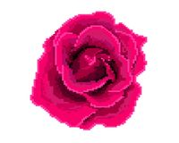 Rose icon. Pixel art. Logo of the flower shop. stock illustration