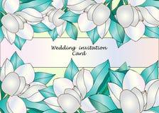 Element dla ciebie projektuje - kolekcję różowi magnoliowi kwiaty royalty ilustracja