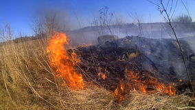Element of fire:  steppe and field fires harm nature stock footage