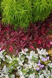 Element krajobrazowy projekt jest powikłanym kombinaci flowerbed Fotografia Royalty Free