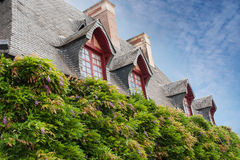 Element stary mansarda dach i piękni kwiaty obraz royalty free