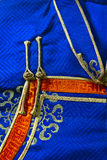 Element of a traditional nomads cloth. Deel Royalty Free Stock Image