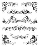 Element vector. Plant element decorative ornament vector nature stylisch abstract designe Royalty Free Illustration