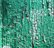 Element voor achtergrond, aard, achtergrond, hout, boomstam, decoratieve oppervlakte, hulp stock foto