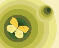 Element voor ontwerp, illustratie met vlinder Stock Afbeelding