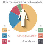 Elemental composition of the human body. Vector background with the elemental composition of the human body Royalty Free Stock Image