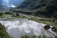 Elemental landscape rice terraces philippines Stock Photos