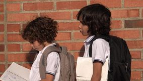 Elementary School Boys Or Students. Stock video in 4k or HD resolution stock video footage