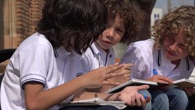 Elementary School Boys Writing. Stock video in 4k or HD resolution stock footage