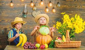 Elementary school fall festival idea. Autumn harvest festival. Celebrate harvest holiday. Children play vegetables. Wooden background. Kids girl boy wear hat royalty free stock photography