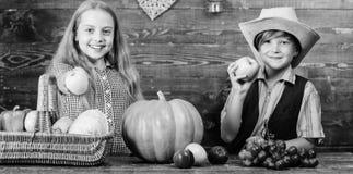 Elementary school fall festival idea. Celebrate harvest festival. Kids girl boy fresh vegetables harvest rustic style stock photo