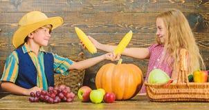 Elementary school fall festival idea. Kids girl boy celebrate harvest festival rustic style. Celebrate harvest festival stock photo
