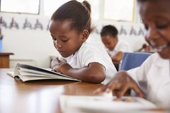 Elementary school girl reading a book at her desk in class Royalty Free Stock Images