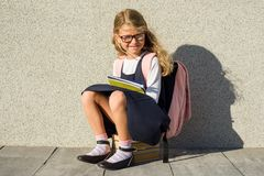 Elementary school student with notebooks in his hand. An elementary school student with notebooks in his hand. A little schoolgirl with a backpack near the Stock Photo