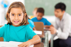 Elementary school student  Royalty Free Stock Image