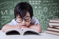 Elementary school student reads textbooks in class Stock Image