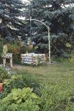 Elemente des Gartens entwerfen auf dem Gebiet des Badekurortes Lizenzfreie Stockfotos