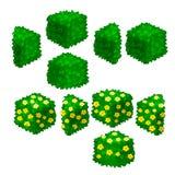 Elemente des Parkdesigns vom Grün Vektor Lizenzfreie Stockbilder