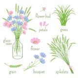 Elemente von Botanik stock abbildung