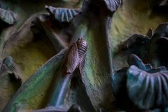 Elementen van insecten, bloemen, vogels van zoogdieren op de oude ingangspoort aan de Tempel van de Heilige Familie Stock Foto's