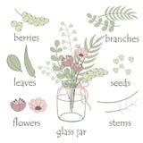 Elementen van plantkunde vector illustratie