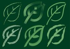 Groene elementen Stock Fotografie