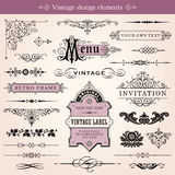 Elementi calligrafici d'annata di progettazione e decorazione della pagina Fotografia Stock