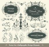 Elementi calligrafici di disegno Fotografie Stock Libere da Diritti