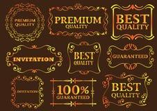 Elementi calligrafici di disegno Immagine Stock