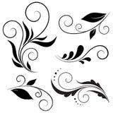 Elementi calligrafici di progettazione Immagini Stock Libere da Diritti