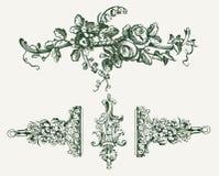 Elementi d'annata dell'ornamento floreale royalty illustrazione gratis