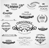 Elementi d'annata di progettazione Immagine Stock