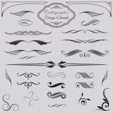 Elementi decorativi calligrafici di progettazione Immagine Stock