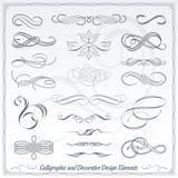 Elementi decorativi calligrafici di progettazione Immagini Stock