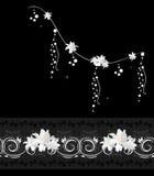 Elementi decorativi con i tulipani bianchi su fondo nero Fotografia Stock Libera da Diritti