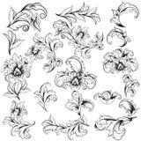 Elementi decorativi di disegno floreale Immagine Stock Libera da Diritti