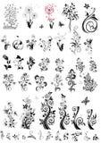 Elementi decorativi di progettazione floreale (in bianco e nero) Fotografia Stock
