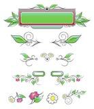 Elementi decorativi naturali Immagine Stock