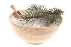 Elementi del bagno del pino. medicina alternativa fotografia stock libera da diritti