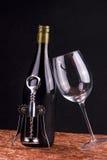 Elementi del vino rosso Immagini Stock Libere da Diritti