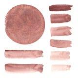 Elementi dell'acquerello di Brown, Fotografie Stock