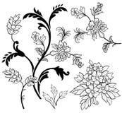 Elementi della decorazione del fiore Fotografie Stock Libere da Diritti