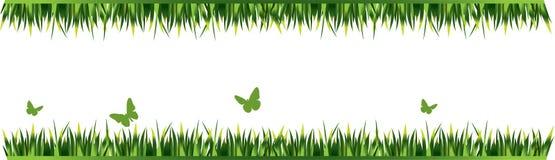 Elementi della decorazione dell'erba Fotografie Stock