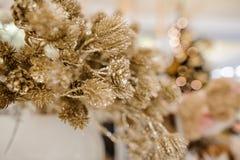 Elementi della decorazione di Natale che consistono delle piante dorate brillanti Immagini Stock