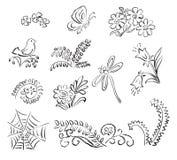Elementi della natura - illustrazione Illustrazione Vettoriale