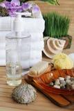 Elementi della stazione termale e prodotti di bellezza Fotografia Stock