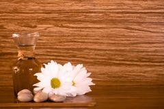Elementi della stazione termale su priorità bassa di legno Fotografie Stock