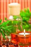 Elementi di Aromatherapy Immagini Stock Libere da Diritti